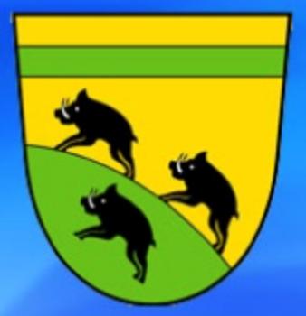 Bild Logo MV-Hagelloch